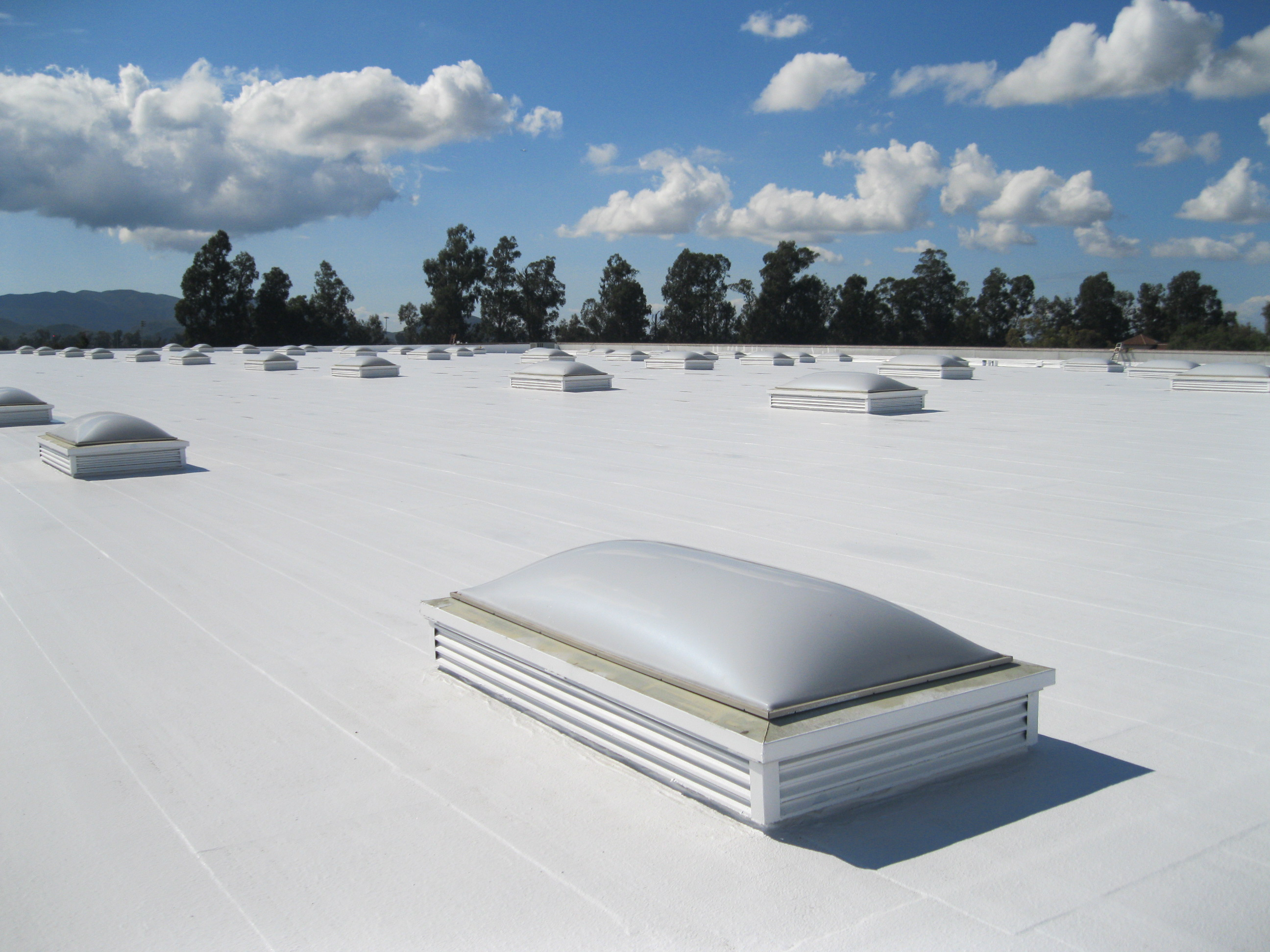 TPO-commercial roof